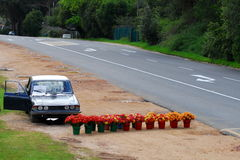 On the side of the road. Selling flowers on the side of the road Royalty Free Stock Images