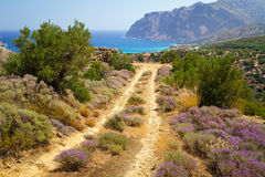 Side road at the sea on Crete Stock Photo