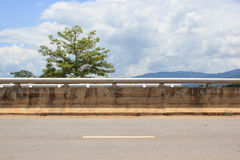 Side of road with tree. And clouds sky background royalty free stock photo