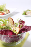 Side salad. Vegetarian side salad with crispy bread and cheese Stock Photos