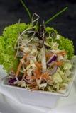 Side salad. Coleslaw and lettuce side salad Royalty Free Stock Image