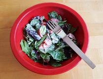 Side salad in red bowl. Partially eaten side green salad in a red bowl with a fork Royalty Free Stock Photography