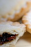 Side up and close view of fresh mince pie Royalty Free Stock Photo