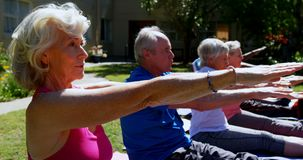 Side view of active mixed-race senior people performing yoga in the garden of nursing home 4k stock video