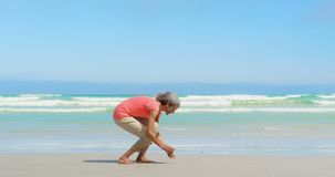 Side view of active senior African American woman picking up seashell on the beach 4k stock footage