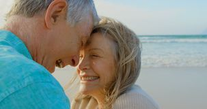 Side view of active senior Caucasian couple embracing each other on the beach 4k. Side view of active senior Caucasian couple embracing each other on the beach stock footage