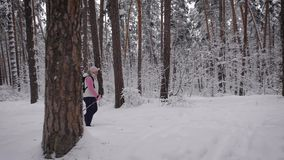 Side view of active woman with rucksack doing nordic walking in the forest. Retired lady stepping quickly with ski poles stock video