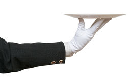 Side view of arm in white glove with white plate Royalty Free Stock Image