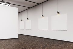Side view of an art gallery with a blank wall and row of picture. Side view of an art gallery interior. A large blank wall on the foreground. Row of pictures Royalty Free Stock Image