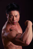 Side view of Asian Body Builder flexing bicep stock image