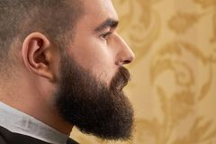 Side view of bearded face. royalty free stock images