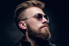 Side view of bearded male in sunglasses. Closeup side view of bearded male in sunglasses on grey vignette background Stock Photos