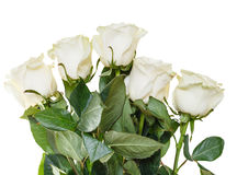 Side view of bouquet of white roses isolated Royalty Free Stock Photo