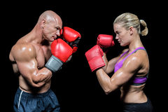Side view of boxers with fighting stance Stock Photography