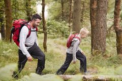Side view of a boy walking on trail in a forest with his father, selective focus. E view of a boy walking on trail in a forest with his father, selective stock photography