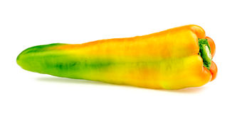 Side view of bright ripe bullhorn chilli Royalty Free Stock Image