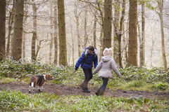 Side view of brother and sister walking pet dog in a wood Stock Image