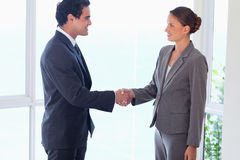 Side view of business partner shaking hands Stock Photo