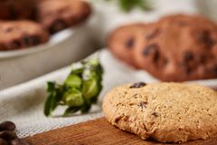 Side view of chocolate chip cookies on a wooden plate over rustic background, selective focus. Side view of chocolate chip cookies on a wooden plate over rustic Royalty Free Stock Photography