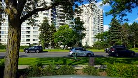 Side View of City Stop and Go Traffic Driving By Lush Green Trees.  Urban Landscape With Car Vehicle Stopping and Then Starting. To Travel in Summer in Day stock video footage