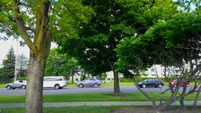 Side View of City Traffic Driving and Slowing Down By Lush Green Trees.  Urban Landscape With Car Vehicle Starting to Reduce Speed. In Summer in Day stock video footage