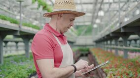 Side view of confident Caucasian male biologist typing on tablet. Portrait of serious man standing in greenhouse and