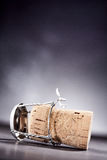 Side view on cork with metal wire Royalty Free Stock Image
