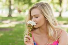 Side view of cute casual woman smelling a white flower Stock Photos