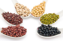 Side view different beans Stock Images