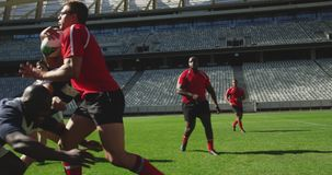 Rugby players playing rugby match in stadium 4k. Side view of diverse rugby players playing rugby match in stadium. They are tackling each other other 4k stock video footage