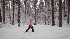 Side view of energetic woman doing active nordic walking exercising in the forest. Lady with ski poles is stepping stock footage