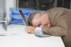 Side view of exhausted businessman with head on laptop in office Royalty Free Stock Photos