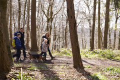 Side view of family walking with pet dog in a wood Royalty Free Stock Images