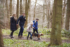 Side view of family walking pet dog in a wood, closer in Royalty Free Stock Photos