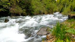 Side view of a fast mountain river. Nature stock video