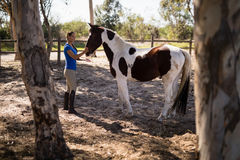 Side view of female jockey with horse. Standing at paddock Royalty Free Stock Images