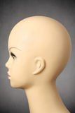 Side view of a female manikin head. Closeup of a female manikin head on gray background Royalty Free Stock Image