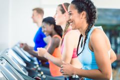 Side view of a fit happy woman and her training group on treadmill stock photography