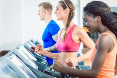 Side view of a fit happy woman and her training group on treadmill royalty free stock photos
