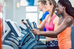 Side view of a fit happy woman and her training group on treadmill Stock Images