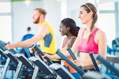 Side view of a fit happy woman and her training group on treadmill stock photos