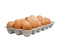 Side View of Fresh Eggs in Carboard Eggbox Stock Photo