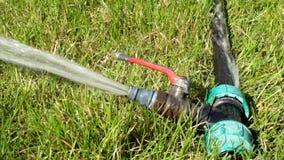 Side view of garden water sprinkler working in stock video