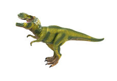 Side view green tyrannosaurus toy on white background Royalty Free Stock Images