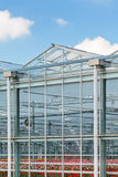 Side view of a greenhouse with flowers inside Stock Photo