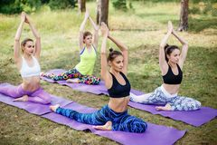 Side view of a group of fitness / yoga people doing exercises in the park. stock photo
