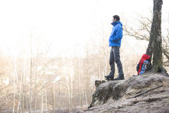 Side view of hiker standing on edge of cliff in forest Royalty Free Stock Photo