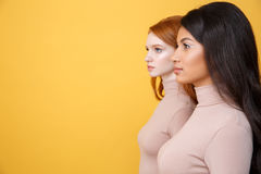Side view image of concentrated young two ladies Royalty Free Stock Images