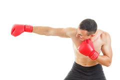 Side view of male boxer hitting straight against a white backgro Stock Images