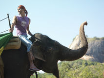 Side View Of Man Riding On Elephant. Side view of a young man riding on elephant with trees in background Stock Photography